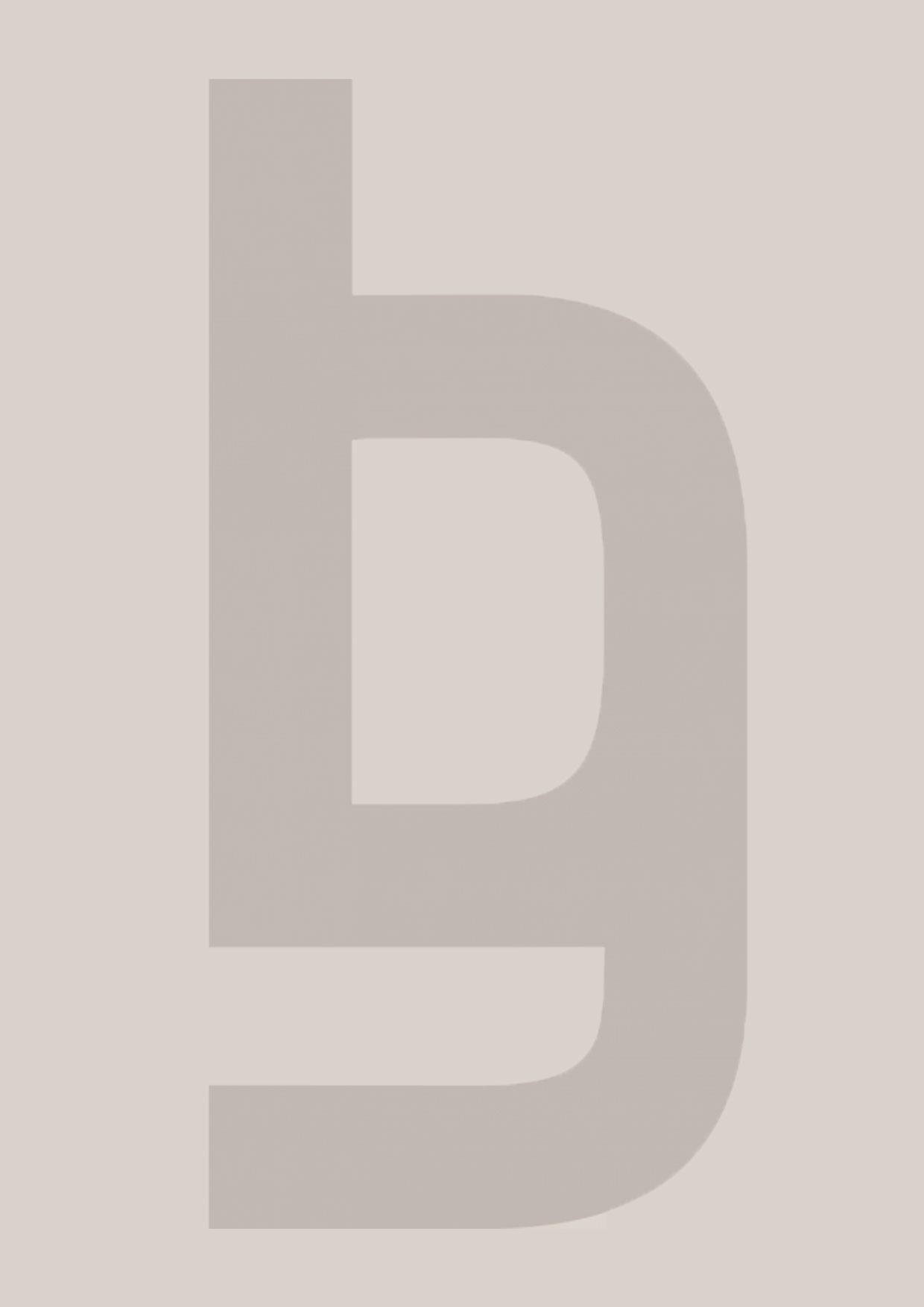 bg-consulting-profil